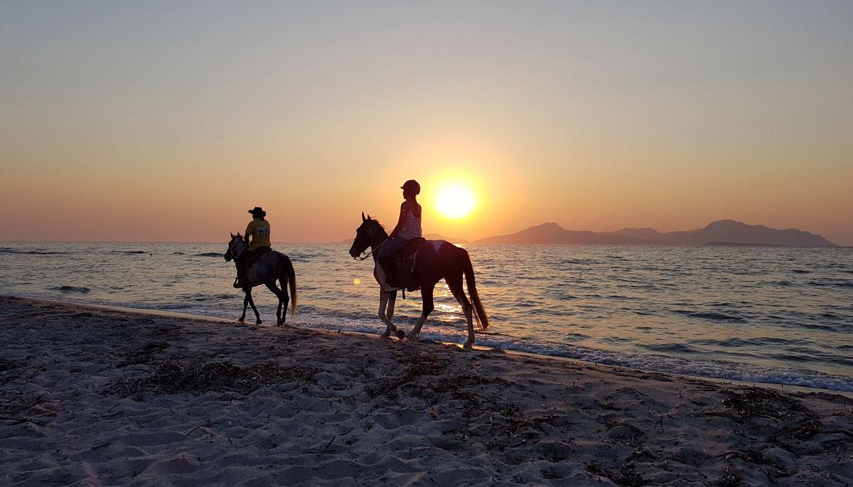 Horseriding, Kos island, Greece